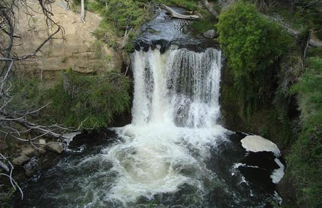 Foto reserva natural nant & fall www.lugaresparavisitar.com.ar