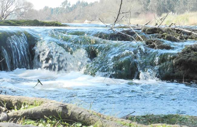 cascadas necochea 3 www.lugaresparavisitar.com.ar