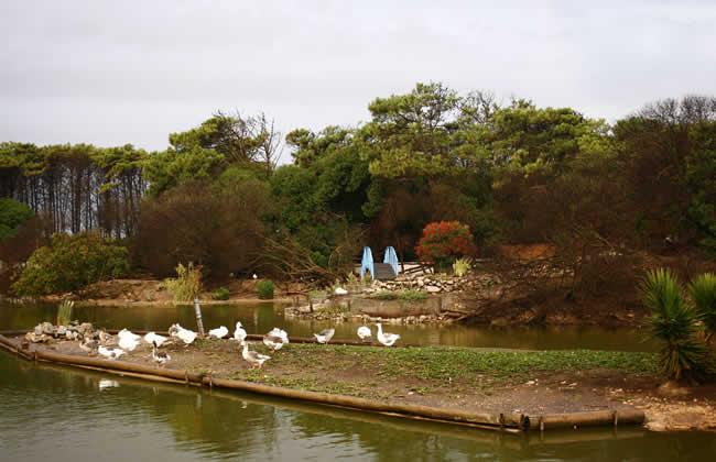 lago necochea 2 www.lugaresparavisitar.com.ar